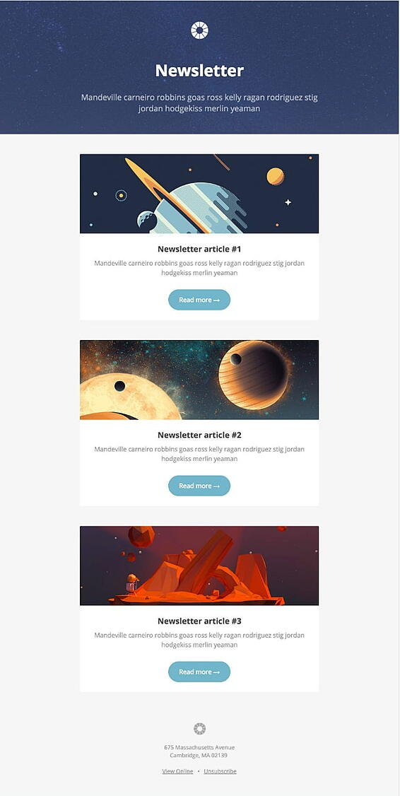 litmus pook email newsletter template