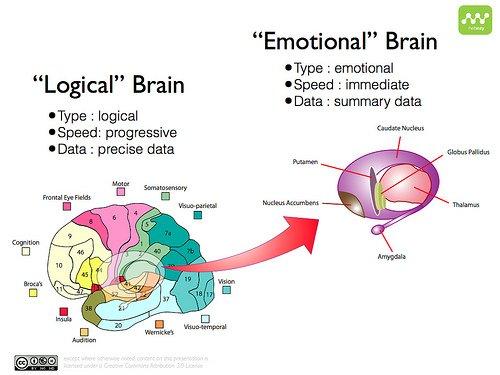 Emotional Marketing dual process