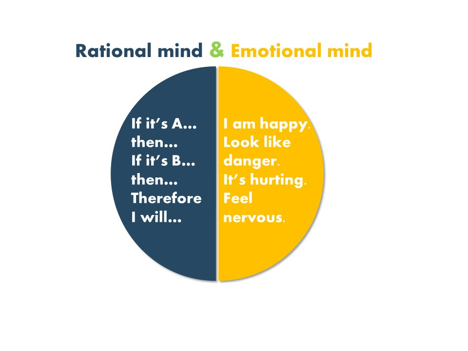 rational and emotional mind in emotional marketing