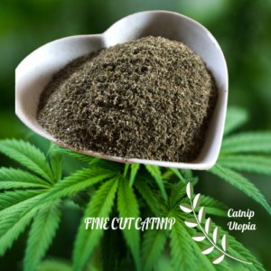 Fine cut catnip newest