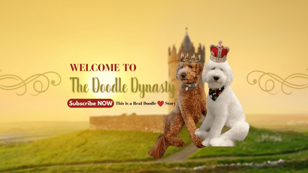 goldendoodles breeder
