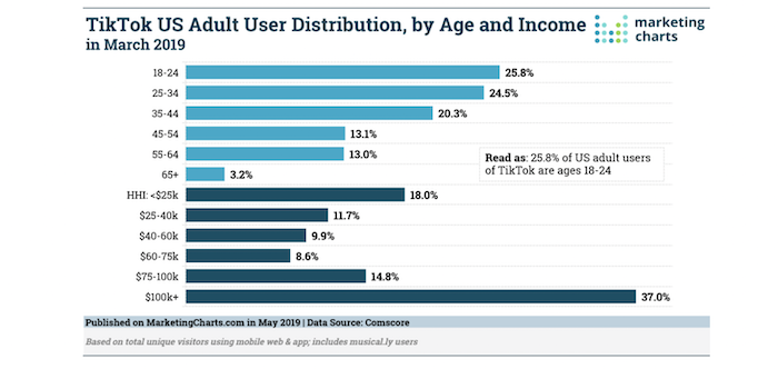 sell products on TikTok - distribution of users by age/income