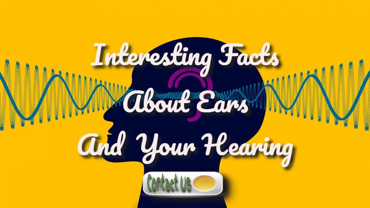 Interesting Facts About Your Ears And Hearing