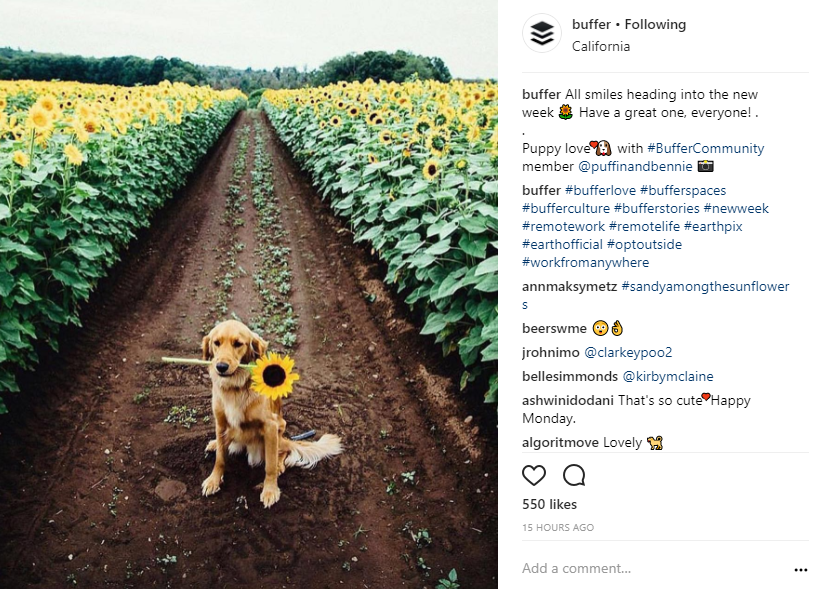 buffer user generated content example